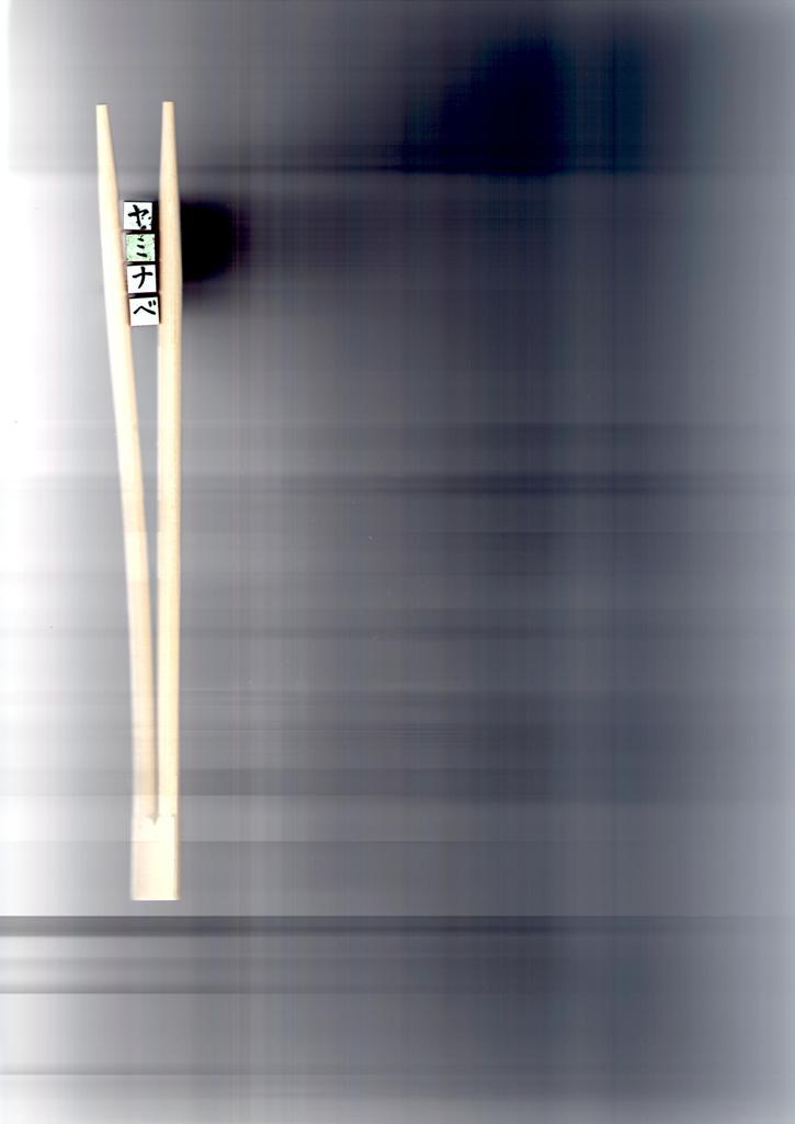 img010 (725x1024)